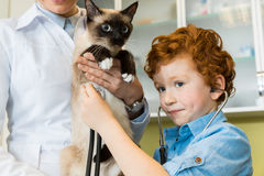 Doktor mit ausculting Katze des roten behaarten Jungen mit Stethoskop stockfotografie
