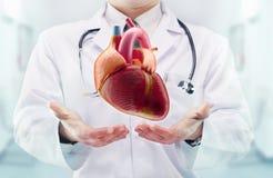 Doktor mit Stethoskop und Herzen auf den Händen in einem Krankenhaus Lizenzfreies Stockbild