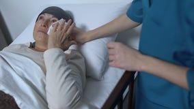 Doktor som stöttar gråta den kvinnliga patienten som lider cancer som ligger i sjukhussäng stock video