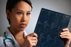 Doktor Studying Medical Scans Royaltyfria Foton