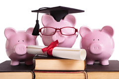 Doktorand- avläggande av examenbegrepp för högskolestudent, utbildningsframgång, diplomcertifikat Royaltyfria Bilder