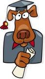 doktorand- symbol för hund Royaltyfria Foton