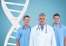 Doktoren mit einem Ball mit DNA-Strang Lizenzfreie Stockbilder