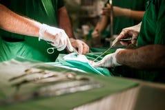Doktorer med hjälpmedel i händer som gör kirurgi Arkivfoton
