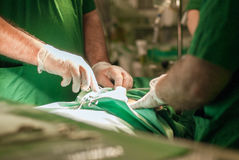 Doktorer med hjälpmedel i händer som gör kirurgi Royaltyfria Foton