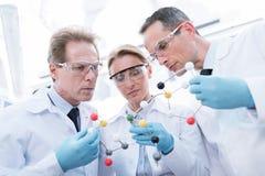 Doktorer som undersöker den molekylära modellen royaltyfri bild