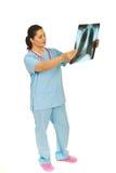 Doktorfrau, die Röntgenstrahl überprüft Stockbilder