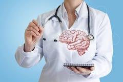 Doktorn drar ett diagram av inverkan på hjärnan royaltyfri foto