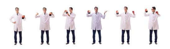 Doktorn i begrepp för bloddonation som isoleras på vit arkivfoto