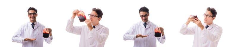 Doktorn i begrepp för bloddonation som isoleras på vit royaltyfria bilder
