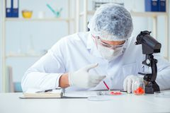 Doktorn som testar nya droger för medicinska avsikter Arkivbild