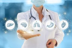 Doktorn visar symboler av inre mänskliga organ royaltyfri bild