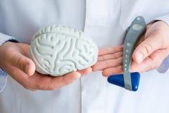Doktors- eller forskarehåll i ett handdiagram av hjärna i en annan - neurological reflexgummihammare Begreppsfoto av neurologi, royaltyfri bild