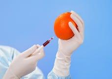 doktorsfrukthänder som injicerar orange s Royaltyfri Fotografi