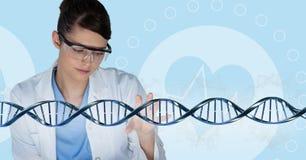 Doktorska kobieta oddziała wzajemnie z 3D DNA pasemkiem Zdjęcie Royalty Free