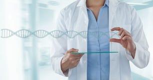 Doktorska kobieta oddziała wzajemnie z 3D DNA pasemkiem Fotografia Stock