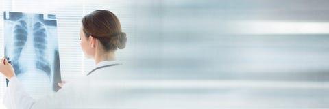 Doktorska kobieta patrzeje radiograph Fotografia Royalty Free