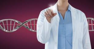Doktorska kobieta wskazuje z 3D DNA pasemkiem Fotografia Stock