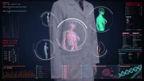 Doktorski wzruszający cyfrowy ekran, Żeńskiego ciała skanerowania naczynie krwionośne, limfatyczny, krążeniowy system w cyfrowego ilustracji