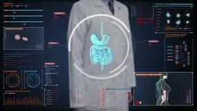 Doktorski wzruszający cyfrowy ekran, Zbliża ciała skanuje wewnętrznych organy, przetrawienie system w cyfrowym pokazie Błękitny R ilustracji
