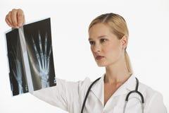 doktorskvinnlig som upp rymmer röntgenstrålen Royaltyfria Bilder