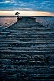 Dokuje prowadzić out w jezioro Fotografia Royalty Free