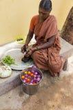 Dokumentär redaktörs- bild En oidentifierad indisk kvinnaspis i gatan Royaltyfri Bild