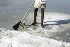 Dokumentalny wizerunku artykuł wstępny Solankowy śródpolny pracownik India Obrazy Stock