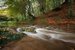 Dokuzak siklawa i rzeka, Bułgaria Zdjęcia Royalty Free