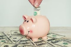 dolarów bankowych świnka Obraz Royalty Free