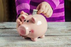 dolarów bankowych świnka Zdjęcia Stock