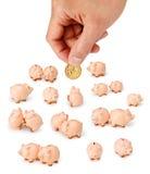 dolar australijski ręki pieniądze prosiątko Obraz Royalty Free