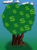 dolar drzewo Obrazy Royalty Free