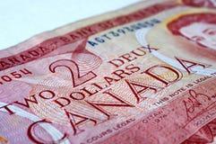 dolar kanadyjski Zdjęcie Royalty Free