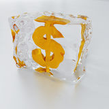 dolar marznący obraz royalty free