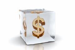 dolar, mrożone Zdjęcia Royalty Free
