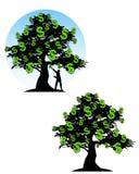 dolar pieniądze podpisuje drzewa Fotografia Royalty Free