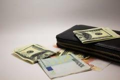 Dolara i euro notatki na białym tle obrazy stock