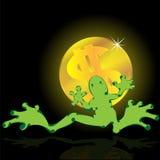 dolarowa żaba Obraz Royalty Free