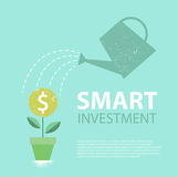 Dolarowa roślina w podlewanie puszce i garnku ukuwać nazwę pojęcia pieniężnego przyrosta nad rośliny biel Mądrze inwestycja równi Zdjęcie Royalty Free