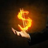 Dolarowej waluty pożarniczy symbol Obrazy Royalty Free