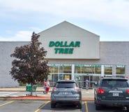 Dolarowy Drzewny sklep i znak Obraz Stock