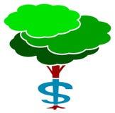 Dolarowy drzewo Obrazy Royalty Free