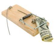 dolarowy mousetrap Zdjęcia Stock