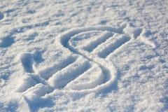 Dolarowy śnieg zdjęcia royalty free