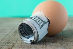 100 dolarowy rachunek w jajecznej skorupie Pojęcie oszczędzanie obrazy royalty free