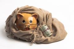 Dolarowy rolki ogrzewanie Zdjęcie Royalty Free