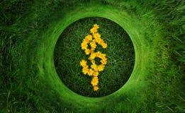 dolarowy zielonego pieniądze naturalny symbol Zdjęcia Royalty Free