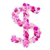 Dolarowy znak od orchidea kwiatów odizolowywających na bielu Zdjęcie Stock