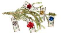 Dolary na jedlinowym drzewie Fotografia Stock